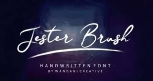 my Streamster brush font 310x165 - Streamster Font Free Download
