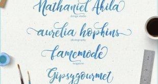 Dandelion Font 310x165 - Dandeleón Script Font Free Download