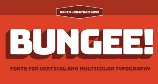 bungee font 310x165 - Bungee Font Free Download