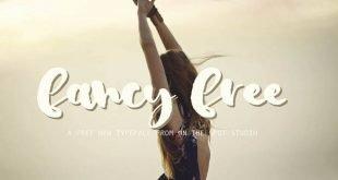 fancy free font 310x165 - TW Fancy Font Free Download