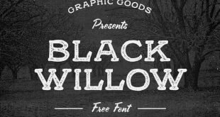 black willow font 310x165 - Black Willow Font Free Download