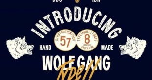 wolf gang 310x165 - Wolf Gang Font Free Download