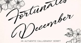 fortunates december font 310x165 - Fortunates December Font Free Download