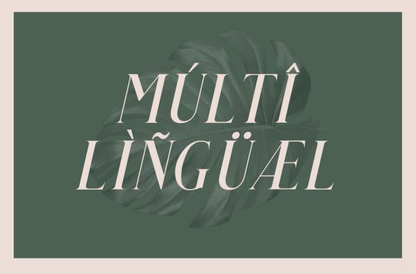 qualey font - Qualey Elegant Serif Font Free Download