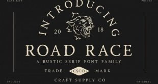 road race font 310x165 - Road Race Typeface Free Download