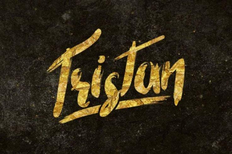 tristan font - Tristan Brush Font Free Download