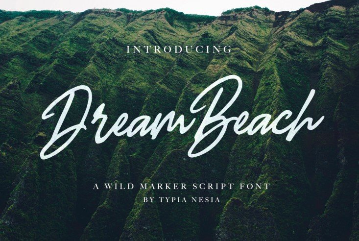 dream beach font - Dream Beach Script Font Free Download