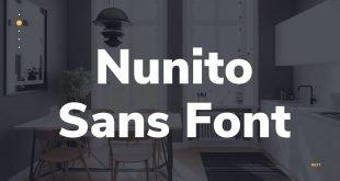 Nunito Sans Font