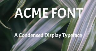 ACME FONT 310x165 - Acme Font Free Download