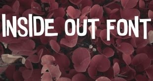 INSIDE OUT FONT 310x165 - Inside Out Font Free Download