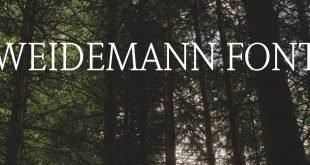 WEIDEMANN FONT 310x165 - Weidemann Font Free Download
