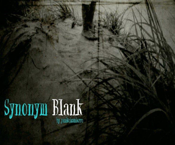 Blank Synonym Font